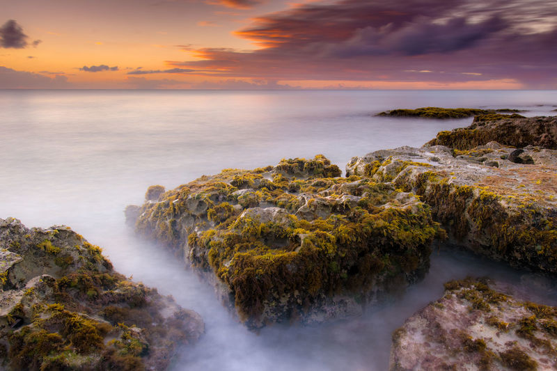 Mossy Rocks At Beach Against Cloudy Sky During Sunset