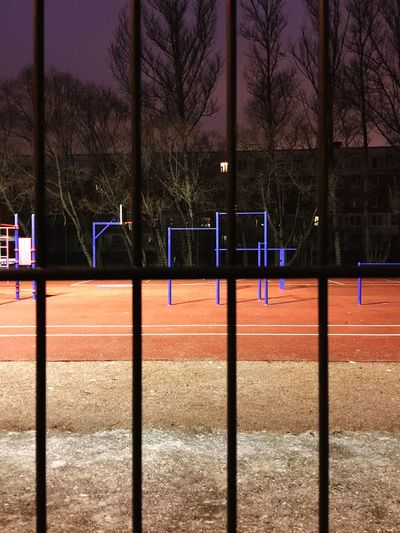 Sport Tree Fence Nature Barrier Playing Field Capture Tomorrow Baseball - Sport Outdoors Court Sunlight Shadow Absence No People Bare Tree Playground Plant Day Net - Sports Equipment Boundary Land EyeEmNewHere