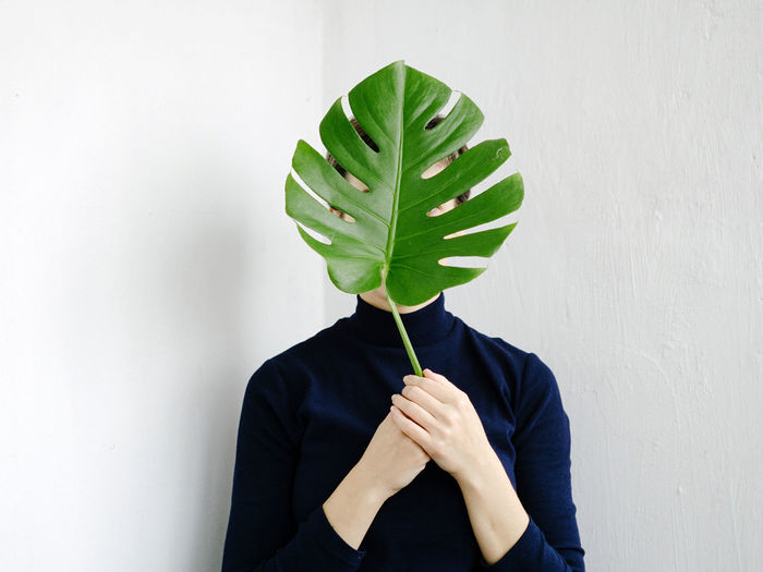 Midsection of person holding leaf against white background