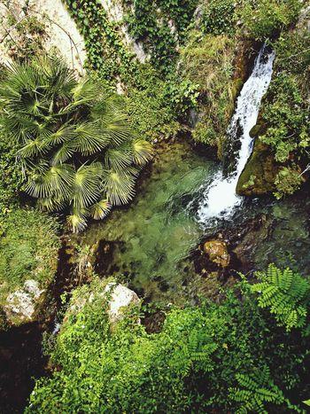 Hello World Green Water France
