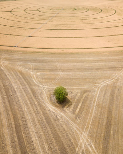 Tire tracks on agricultural field