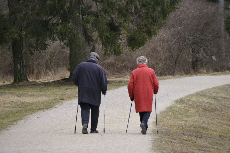 Rear view of senior couple walking on road