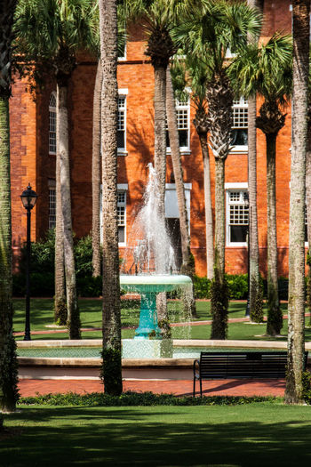 Architecture Building Exterior Built Structure Day Fountain Grass Lawn Long Exposure Motion Nature No People Outdoors Park Park - Man Made Space Plant Seat Spraying Swimming Pool Tree Water