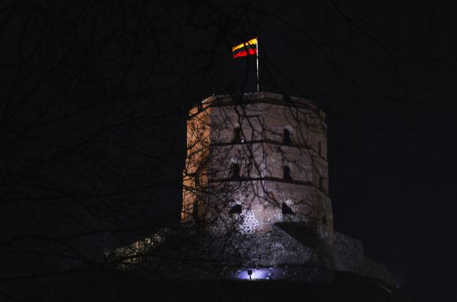 Gediminas Gediminas Castle Gediminas Tower Gedimino Pilis History Museum  Architecture Bare Tree Flag History Architecture Night No People Patriotism