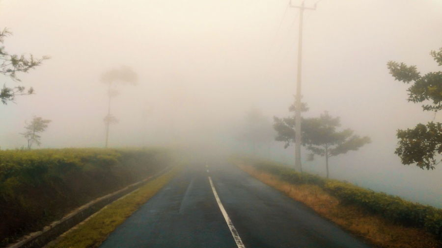 Road amidst trees in foggy weather against sky
