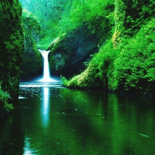 Beautiful Indonesia Slrphotography