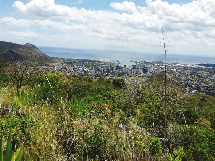 The City Light Port Louis Mauritius Le Pouce Landscape_Collection City Life