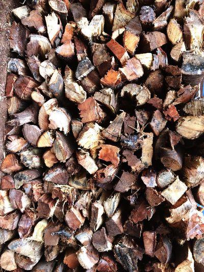 TakeoverContrast Wood Savetrees🌲🌳 Environmental Conservation PreserveNature