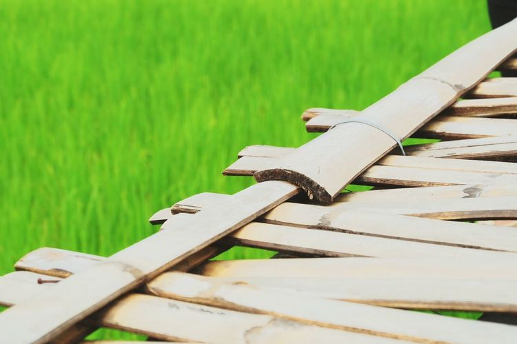 Wood - Material Grass Day No People Outdoors Weapon Photograph Nature Close-up Metal Industry