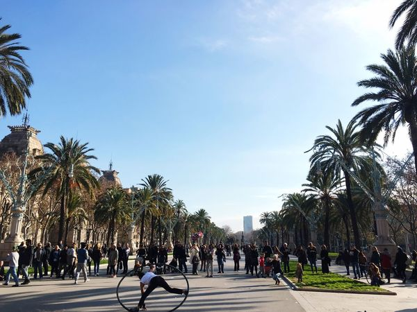 Tree Real People Large Group Of People Palm Tree Men Leisure Activity Women Growth Day Outdoors Sky Nature Architecture People Hulahoop Barcelona Adapted To The City Barcelona, Spain SPAIN Artist Art Is Everywhere