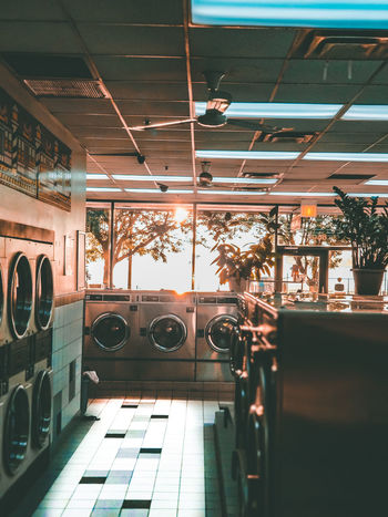 EyeEm Selects Arts Culture And Entertainment Medical Cannabis Architectural Design Hanging Light Marijuana - Herbal Cannabis Ceiling Denver Disco Ball Skylight Architecture And Art Recessed Light Cannabis - Narcotic Ceiling Light  Pendant Light Interior Light Fixture Marijuana Joint Paranoia Concepts And Topics Directly Below Ceiling Fan Disco Lights Laundromat Cannabis Plant Hanging Roof Beam Wind Chime Chandelier