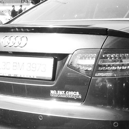 Saw this today 😂😂 Audi Audirs5 Carsticker Funny fatchick sportscar