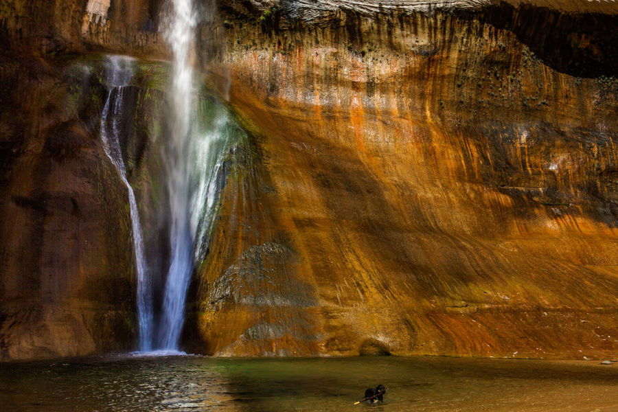 Lower Calf Creek Falls Beauty In Nature Day Dog In Water Motion Nature No People Outdoors Rock - Object Scenics Slow Shutter Speed Tourism Tranquil Scene Travel Destinations Water Waterfall