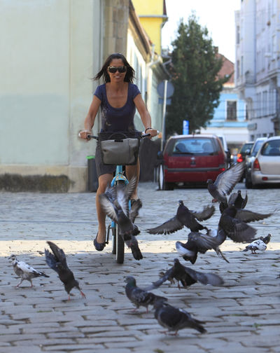 Woman cycling in a city. City Exercise Transportation Woman Bicycle Birds Cycling Front View Girl Leisure Activity Lifestyles Mode Of Transport One Person Outdoors Pigeons Real People Ride Riding Spread Wings Street Urban Urban Cycling Urban Transportation Young Adult