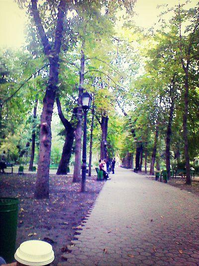 Walking Around Lovelovelove Sexiness love is in the air, like the automn leaves.
