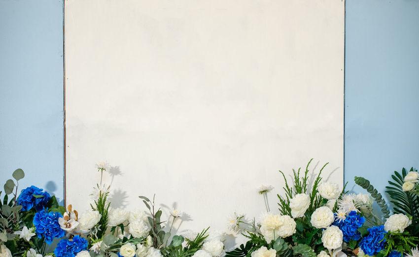 White flower on
