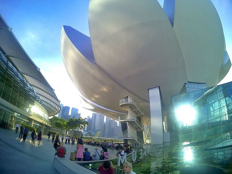 ArtScience Museum Singapore Low Angle View Sky Outdoors Illuminated Architecture Wideangle Wide Shot Travel Destinations Travelphotography Travel Structure City Bpro5alpha