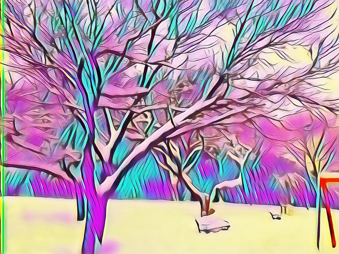 Filtre Emirgan Park Kar Snow ❄ Multi Colored Paper Indoors  Art And Craft No People Table Creativity