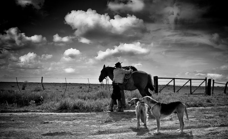 Argentina Photography Blackandwhite Photography Campo Argentino Cloud - Sky Gaucho Argentino Gauchos Hombre De Trabajo Horse Man And Horse Sky Skyandclouds  Trabajo De Machos  Trabajo Duro Vidagaucha Working Animal