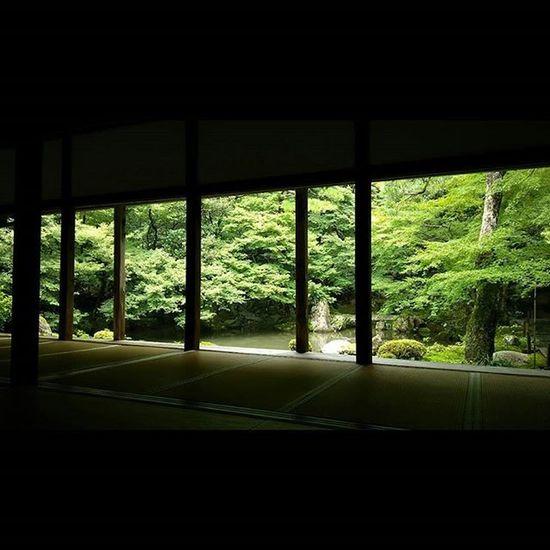 蓮華寺 8/30 日差しが柔らかい。 月一蓮華寺 蓮華寺 寺 Temple 京都 Kyoto Team_jp_ Japan Instagood 景色 Scenery 自然 Nature Icu_japan Ig_japan Ig_nihon Jp_gallery Japan_focus