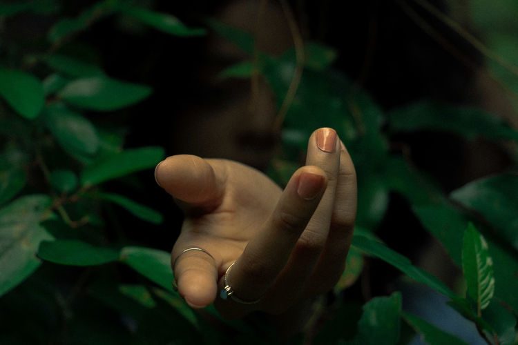 Close-up of human hand emitting through leaves