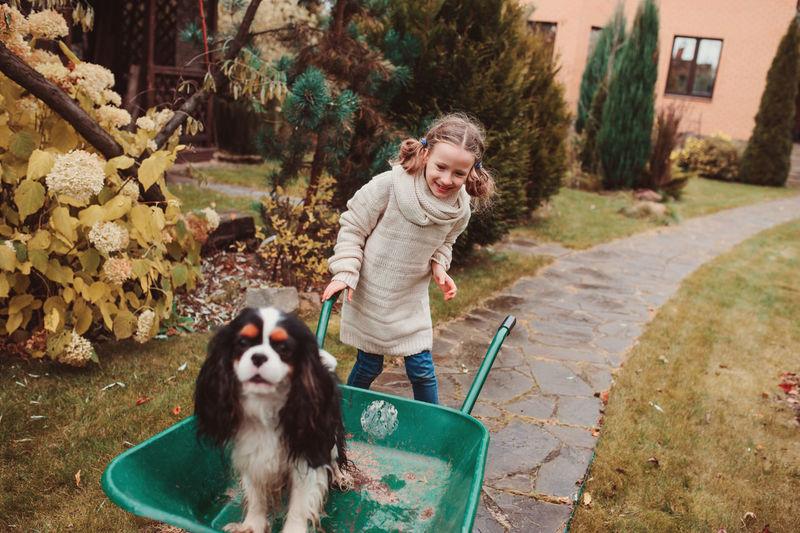 Girl Standing By Dog In Wheelbarrow On Footpath