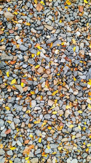 High angle view of autumn leaves on pebbles