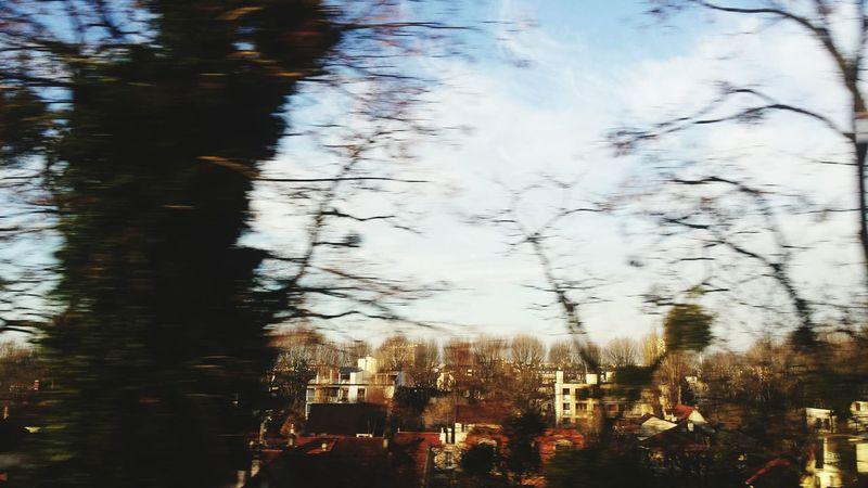 Inthetrain Sunny Day Cityscape