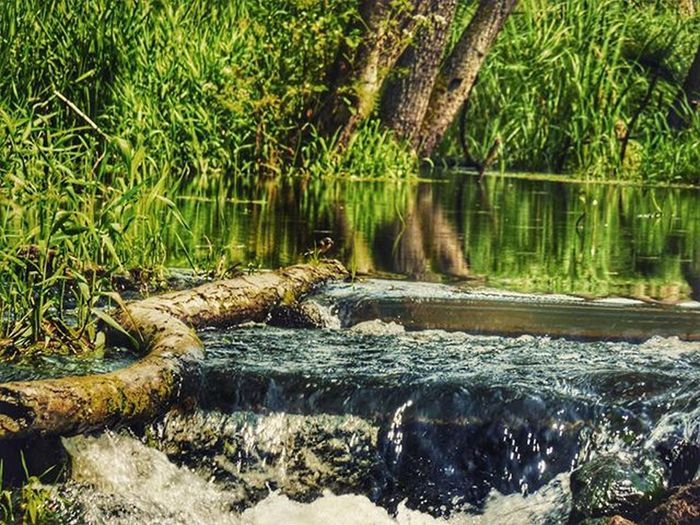 Rsa_water Awphoto Ayad_photography Naturelovers Likeforlike Like4like Rsa_river Match_colour Hdr_pics Tv_hdr Hdr_lovers Hdr_planet Super_polska Nature Lubiepolske Ig_photography Ig_poland