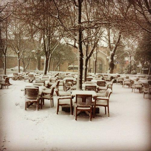 Erey çay bahçesi Stat Park Istanbul Turkey Zeytinburnu