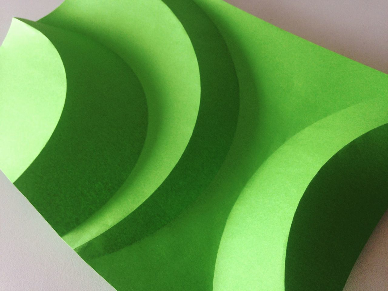 green color, no people, leaf, pattern, close-up, textured, curve, day, indoors, architecture