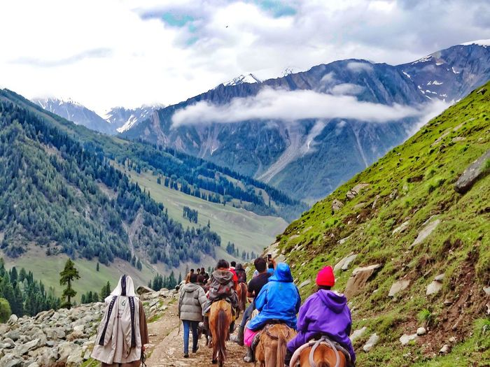 Rear view of people riding horses on mountain