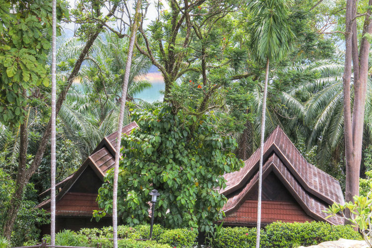 Holiday Holiday Destination Kenyir Kenyir Lake Kenyir Lake Resort Malaysia Nature Peaceful Tranquil