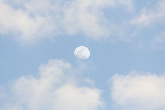 Moon Moonlight Moody Sky Moon Light Moon Surface Moon And Clouds Moon Shots Moonphotography Moonlightscape Sky Sky And Clouds Cloud - Sky Clouds And Sky Cloud Clouds Cloudy Cloudscape Cloud And Sky Cloudy Day Clouds & Sky Cloudy Sky Cloudy Skies Day Daytime Nature