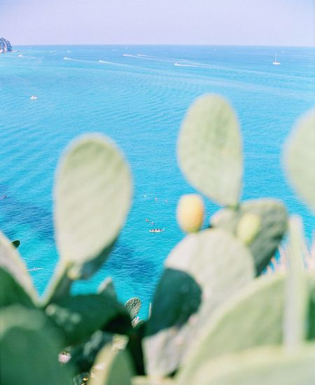 Tropea EyeEm Travel Destinations Filmphotography Italy Calabria Swimming Pool Blue Day Water Nature Pool Close-up Positive Emotion Sea Outdoors