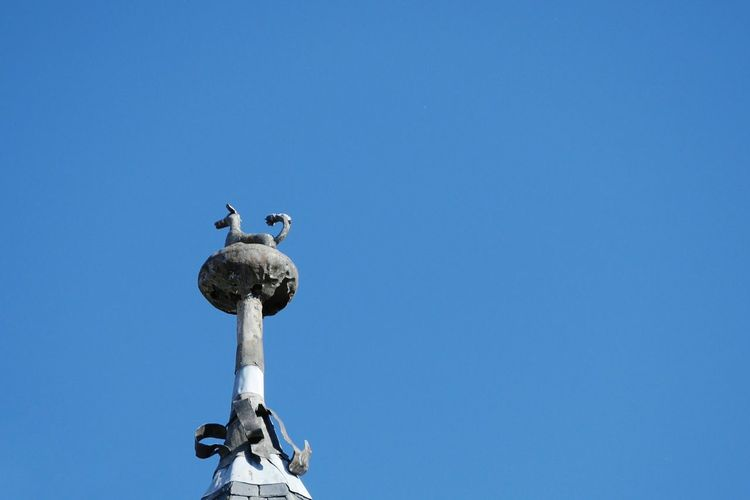Faîtage à Martel - Sculpture Low Angle View Blue Outdoors Sky Clear Sky Perching Animal Representation Minimalism Minimalobsession Statue Old Architecture Ancient Architectureporn Old Town Tourism Clear Sky Architecture History Travel Destinations Village Architecture_collection