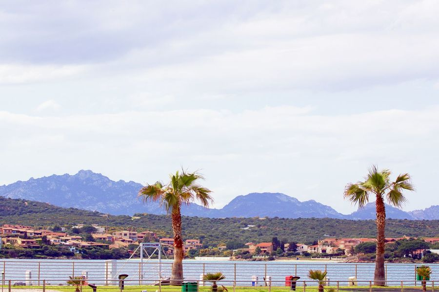 Golfo Aranci Background Bay Beauty In Nature Built Structure Cloud - Sky Day Mountain Mountain Range Nature No People Outdoors Palm Tree Plant Scenics - Nature Sea Sky Tree Water