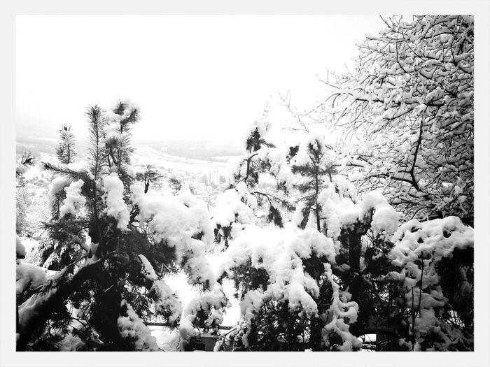 Endlich wieder Schnee!