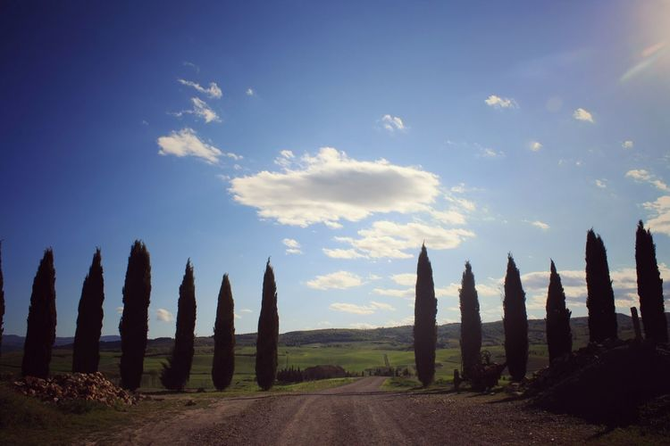 Cloud - Sky Sky No People Travel Destinations Landscape Outdoors Scenics Nature Day Tuscany San Quirico D'Orcia Cypresshill Cypress Trees  Val D'orcia