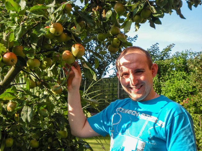 A man picking apples form an apple tree in a back garden. Agriculture Apple Apples Autumn Branch Day Food Fresh Freshness Fruit Fruit Tree Garden Happiness Harvest One Man Only Outdoors Picking Smiling Sunny T-shirt Tree