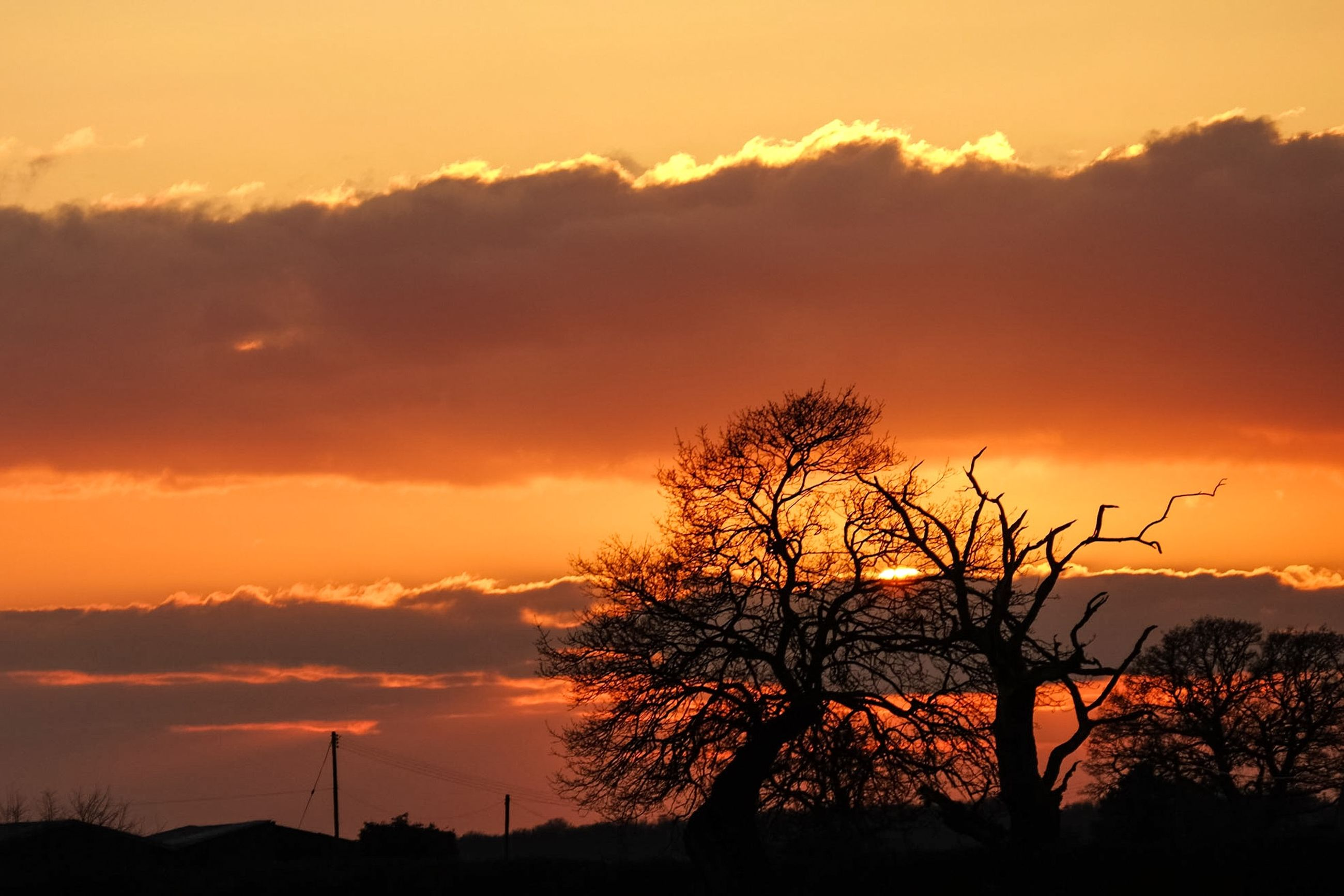 sunset, silhouette, orange color, sky, tree, beauty in nature, scenics, tranquility, tranquil scene, cloud - sky, bare tree, nature, low angle view, dramatic sky, idyllic, cloud, outdoors, no people, branch, landscape