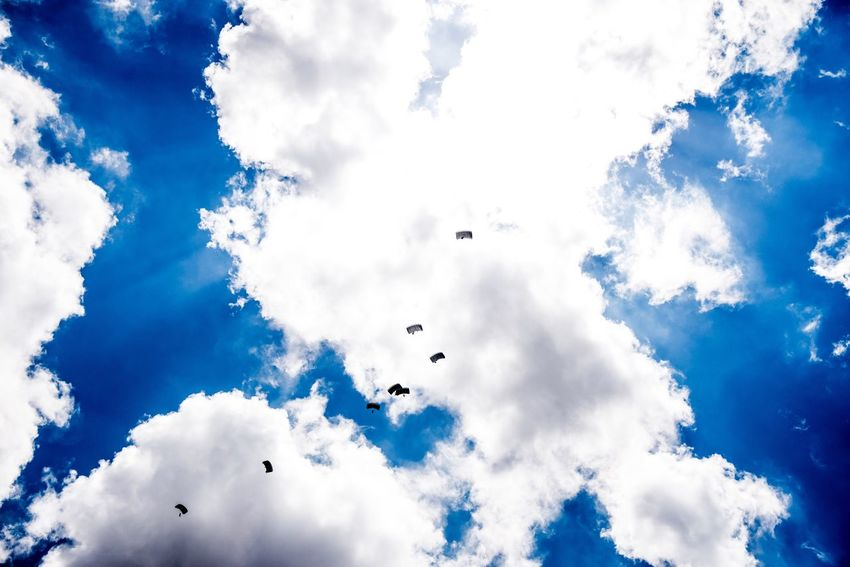 Paratroopers over Tampa. Check This Out Blue Sky Military Paratroopers Tampa Florida Florida Life Army Training Traveling Perspective Nikonphotography Transportation Photography Flight Skydiving Diving Parachute Parachute Jump Hanging Out Flight ✈ Falling Beautiful Clouds Clouds And Sky