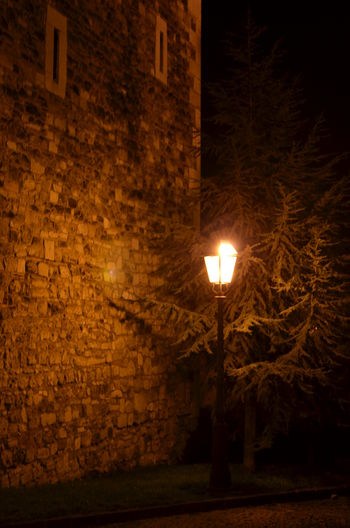 Budapest Castle Night Rock Rock Wall Stone Stone Wall Street Light Tree Hungary