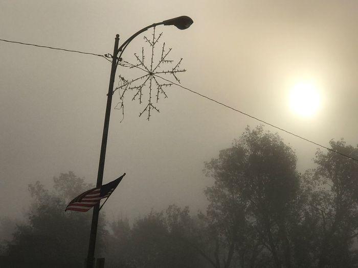 Christmas Decorations Foggy Morning American Flag Trees Snowflake Lights