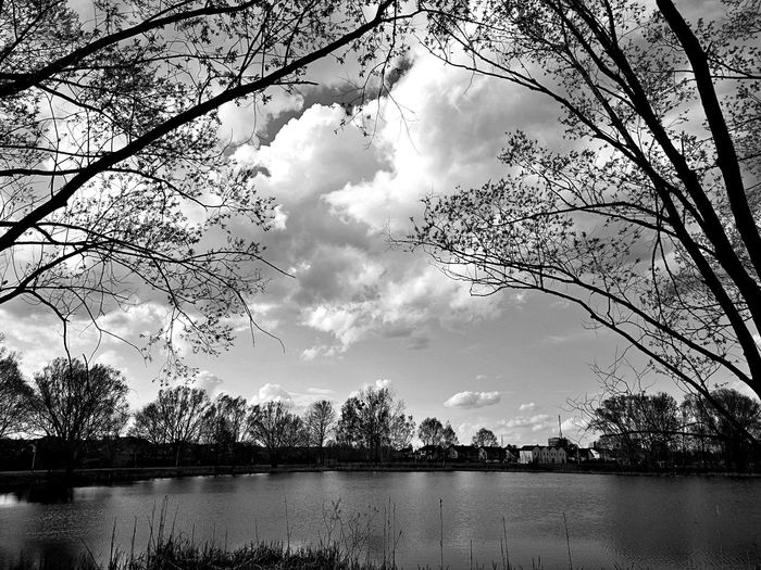 Silhouette bare trees by lake against sky
