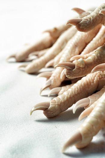 kurczak 07 Stark Texture Skin Fingers Reptilian Avian Feet Scales Claw Bird Feet Chicken Feet Close-up Focus On Foreground Still Life Food And Drink Raw Food
