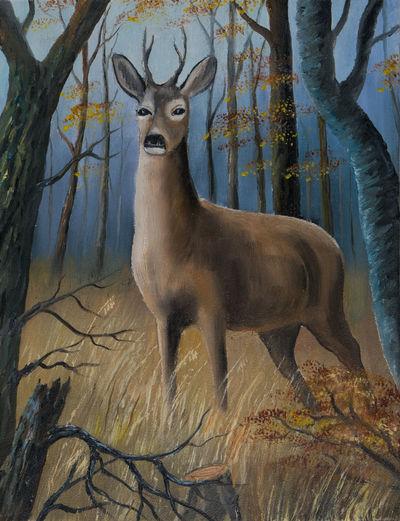 Oil painting - A brown deer stands in the high grass between trees Canvas Deer Grass Trees Antler Art Brown Grass Deer Between Trees Deer In Forest Forest High Grass Oil Painting Wildlife Work Of Art