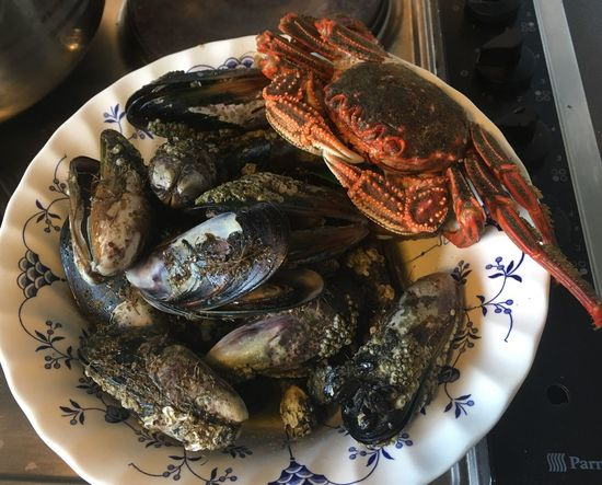 I know now! Thank you New Zealand Food Crab - Seafood Mussels Nomnombomb Finding Food From The Sea Fresh Is Best Seafood Food Plate Healthy Eating Food And Drink Freshness Ready-to-eat