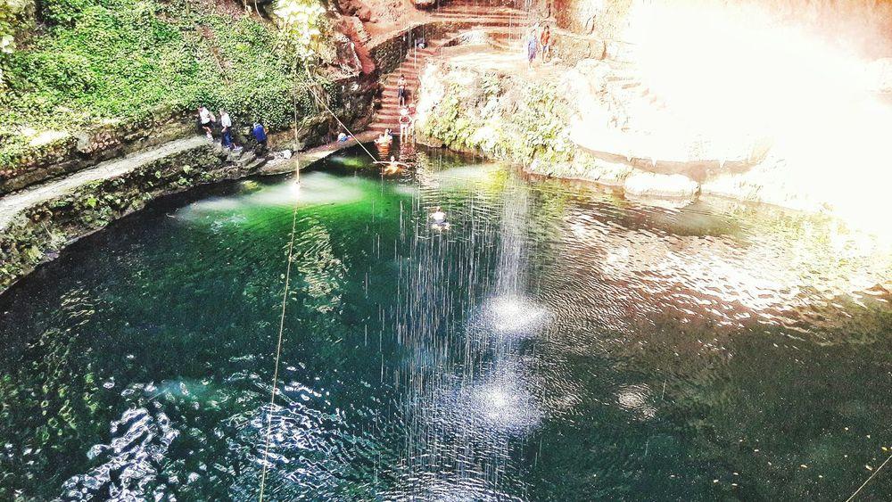 Cenotes Mexico Mobilephotography Magicmoment Scenics
