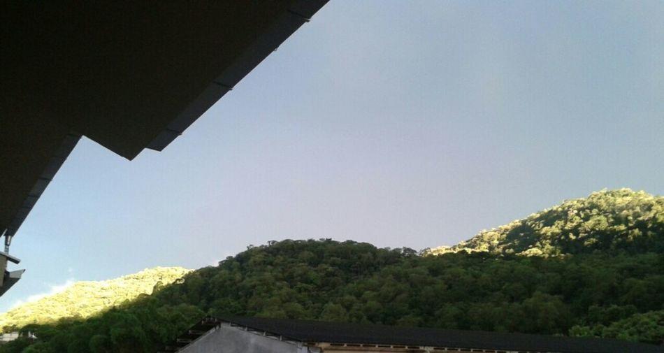 Sol Nas Copas Das árvores, Lindo De Se Ver